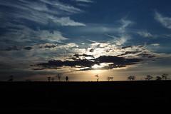 Nos planaltos do Mato Grosso do Sul... (Lon Winchester Photography) Tags: 1200s planalto matogrosso matogrossodosul paisagem landscape brazilianlandscape paisagens paisagembrasileira paisagensbrasileiras paisagensdobrasil paisagemdobrasil beautiful sky bluesky nature naturebeauty cerrado clouds cloud nuvem nuvens esplendor canon 50d 1785mm