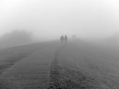 November auf Hiddensee (funk_explosion) Tags: november fog island fuji nebel balticsea insel fujifilm ostsee hiddensee x10 mecklenburgvorpommern finepixx10