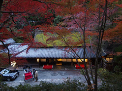 autumn dusk kyoto (k n u l p) Tags: blue autumn sunset red night kyoto dusk olympus arashiyama    rickshaw sagano 1122 ep1 pulled zd   hiranoya