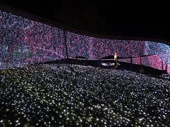 さがみ湖イルミリオン光の銀世界クライマックスの写真