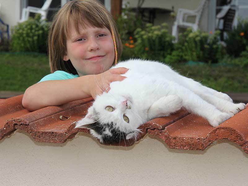 Kastanienhof Selz - Mädchen mit Katze