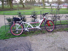 Pure Genius at Attingham car park (DizDiz) Tags: uk england home bicycle tarmac metal fence shropshire tandem carpark nationaltrust stately grasstrees saddlebag attinghampark puregenius olympusc720uz redwheelrims mtbtandem twintwentysix