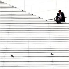 Relax (DanielaNobili) Tags: two sun paris stairs relax reading break ladefense pidgeon 500x500 winner500 bestcapturesaoi elitegalleryaoi blinkagain bestofblinkwinners blinkagainsuperstars danielanobili asquaresuperstarstemple escalierdelagrandearche fotografasparaenmarcar10
