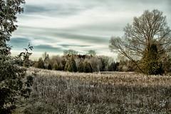 warming fields (D J England) Tags: ontario guelph trails southernontario dje canonef24105f4lis canoneos7d djengland djenglandphotography