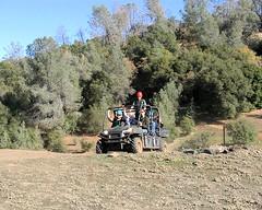 006 Riding The Polaris Rangers (saschmitz_earthlink_net) Tags: california mariposa 2011 polarisranger yosemiteziplinesandadventureranch