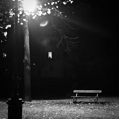 Shed some light on me (Arianna_M(busy)) Tags: autumn trees alberi bench solitude streetlamp silence firenze pace autunno lampione silenzio panchina solitudine shinedown giardinodellorticoltura giardinodellerose shedsomelightonme andholdmeupindisbelief andtellmesomethingthatillbelievein imfallingapartagain andicantfindawaytomakeamends andimlookinginbothdirections butitsmakebelieveitsallpretend peopleareafraidtobealonethisisthereasontheymakemistakes stephenlittleword lepersonehannopauradiesseresoleperquestosbagliano
