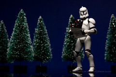 343/365 | First Card of the Season (egerbver) Tags: christmas blue trooper david reflection tree pine toy toys star action eger days card clones figure envelope stormtrooper wars 365 clone hasbro