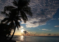 Perfect day (Heaven`s Gate (John)) Tags: ocean sunset sea vacation sky holiday tree nature water silhouette clouds landscape perfectday palm caribbean stlucia westindies 10faves johndalkin heavensgatejohn eastwindsinn