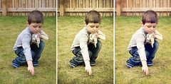 before and after: playing with sticks (Greig Reid) Tags: family portrait photoshop garden outdoors triptych outdoor naturallight beforeandafter alpha a200 guru beforeafter actions lightroom lr3 greengold photoshopactions presets outdoorportrait paintthemoon coffeeshopblog thecoffeeshopblog wwwthecoffeeshopblogcom purephotoshopactions wwwpaintthemoonnet wwwpurephotoshopactionscom stellergurugreengold2
