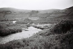 a world away (Timoleon Vieta II) Tags: portrait bw river landscape cow cattle cows isleofskye bokeh timoleon