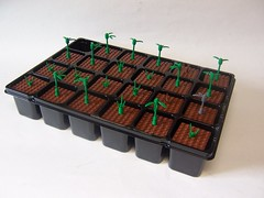 How does your garden grow? (monsterbrick) Tags: plants spring advent calendar lego grow seed adventcalendar seedling moc