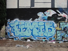 TIMID (Same $hit Different Day) Tags: graffiti bay south timid