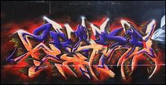 2Rode (SKE) Tags: street terrain streetart paris art colors wall painting graffiti pain