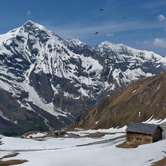 Beautiful mountain shelter at the Grossglockner mountain pass (Bn) Tags: geotagged geo:lon=12828839 geo:lat=47118404 austria hut shelter lodge refuge grosglocknerhochalpenstrase high alpine road route tour riding alps hohe tauern national park pasterze motor bikes glacier highest mountain snow altitude massive cliffs kaiserfranzjosefshhe driving pleasure bikers heaven famous tourism 29eur toll grosglockner hochalpenstrase 48 kilometers ice nature gletsjer hairpin curves classic motorists motorcycle car auto winding back downhill edelweisspitze oostenrijk sterreich salzburg riders harley harleydavidson davidson vtwins sun brochure haus naturschau
