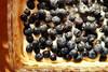 kermaviili-mustikkapiiras (paper-tiger) Tags: pie blueberries blueberrypie mustikkapiirakka blueberrycreampie kermaviilimustikkapiiras