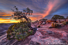 Dead Horse Sunset (James Neeley) Tags: sunset landscape utah deadhorsepoint canyonlandsnationalpark canyonlands hdr 7xp jamesneeley