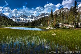 High Sierra Purity