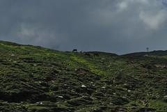 Rohtang Pass (Vivek Sheel) Tags: camping india trekking himalaya manali rohtangpass himachalpradesh hampta