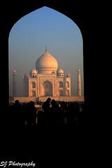 india (85)Taj Mahal