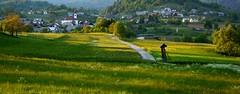 Gorje (zkbld) Tags: green nature landscape nikon slovenia slovenija gorje d5100