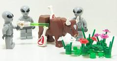 Alien Experiment (Silenced_pp7) Tags: flowers 6 landscape cow ancient cows lego circles alien bull ufo aliens meat butcher crop series custom six vignette tow abduction autopsy wiz moc vignettes vig vigs ancientaliens toywiz