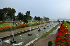 Fountains of Nishat bag (draskd) Tags: flowers india lake heritage gardens bag is dal kashmir srinagar fountains dallake mughal naturephotos nishat kashmirtourism indiatours nishatbag