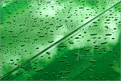 Green water droplets (Stefan Cioata) Tags: desktop reflection green water glass beautiful logo photography photo droplets image screensaver sale background great stock best explore getty droplet top10 available outstanding
