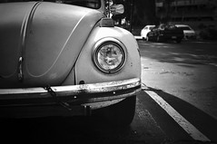 Black & White (kingdomany) Tags: bw white black photography nikon flickr d90 blackwhitephotos