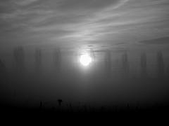 ci che di eroico e geniale c' nel diventare uguale al proprio sfondo (FrauBlucher) Tags: nebbia cos bello fatica danielesilvestri conquiste coraggio ilsecondodasinistra ognimattinaunospettacolo saperecosavabeneperme