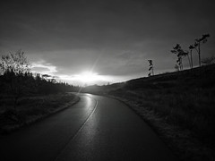 In the middle of nowhere, on a morning road to somewhere else (kenny barker) Tags: road trees winter bw monochrome sunrise lumix dawn scotland north shining saariysqualitypictures panasonicg1 daarklands wlcomeuk kennybarker