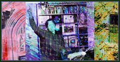 The Collector (Tim Noonan) Tags: art museum digital triptych branches vivid manipulation books moose imagination dvds dwight hypothetical vividimagination artdigital shockofthenew sotn newreality sharingart maxfudge awardtree maxfudgeexcellence maxfudgeawardandexcellencegroup trolledproud magiktroll exoticimage netartii