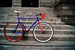 BICLA (Lavawolf) Tags: bike mexico gear bicicleta single fixed fixie