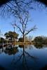 DSC_0129 (JosephD.Maldonado) Tags: reflection nikon sanmarcos 1855 nikkor texasstate texasstateuniversity vinyetting d3100