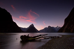 Milford Sound (Eloise Claire) Tags: pink sunset newzealand wallpaper color colour tree clouds landscape nz milfordsound longexposuretime sandflypoint