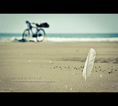 (ISO_200) Tags: sea praia beach mar iso200 sand dof areia bicicleta utata pena bycicle canonef24105mmf4lisusm canoneos40d pedrovilla