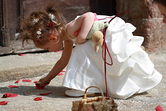 Divers_006 (Michel BOYER) Tags: wedding roses girl up very young mariage picking