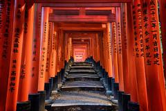 Stairway to heaven (adrianchandler.com) Tags: red japan stairs asian japanese kyoto shrine asia inari gates path walk stairway staircase walkway shinto torii torri fushimi