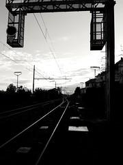 Binari (Francesco Petrilli) Tags: stazione treno biancoenero binari scambio collecchio