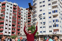 Palestinians show their dogs during the second dog show organized by local dog breeders (TeamPalestina) Tags: reflection heritage beautiful sunrise canon landscape hope landscapes photo am amazing nice nikon photographer natural sweet live palestine innocent comfort blockade freepalestine palestinian occupation