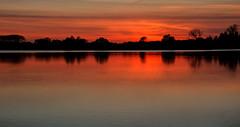 red sky (stevefge (away travelling)) Tags: sunset red sunlight water netherlands reflections sundown lakes nederland beuningen weurt grindgat nederlandvandaag reflectyourworld