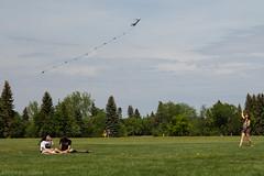 teddybearpicnicday-26 (claire.pontague) Tags: bear park party kite sunshine outdoors picnic teddy stage saskatoon dancefloor djs 2016