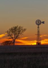 Texas Windmill (Chandler Photography) Tags: sunset sky tree nature windmill beauty outdoors texas state farmland burkburnett