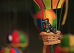 Colorindo Sampa (DJ Roger) Tags: brasil cores sampa colorindo canonxsi rogerdjfotografo