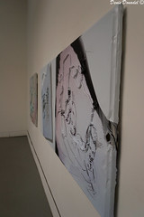 Arte Moderna (Denis Donadel) Tags: nikon arte 105 18 biennale venezia moderna 2011 artemoderna d3100