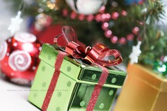 Christmas Time (Michele D. Lee) Tags: christmas xmas tree shiny gifts ornaments presents bow ribbon package