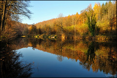 La nature s'endort (Excalibur67) Tags: autumn trees nature water forest automne nikon herbst arbres alsace paysage reflexion reflets d90 vosgesdunord forts