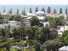 Clive Square (Home Land & Sea) Tags: newzealand nz cbd carillion napier sonycybershot hawkesbay goldfishpond viewfromthehill clivesquare homelandsea dschx100v