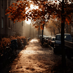 Grschstrae #II (Alexander Rentsch) Tags: morning autumn trees urban orange sun berlin sunshine yellow germany deutschland golden shadows bokeh herbst foliage sonne bltter bume morgen schatten sunbeam sonnenstrahl pankow sonnenschein canonef50mmf14usm canoneos5dmarkii grschstrase