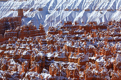 Army of Clones (Willie Huang Photo) Tags: national park national point snow landscape canyon nature bryce sunset utah hoodoo southwest scenic bryce hoodoos