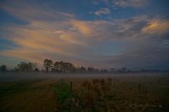 Foggy Morning (Glenn Anderson.) Tags: trees mist clouds sunrise fence weeds pasture groundfog a850 minolta24105